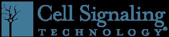 logo_CST.png