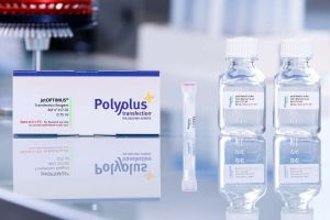 DNA transfection reagent