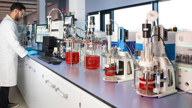 Bioreactors & fermentors