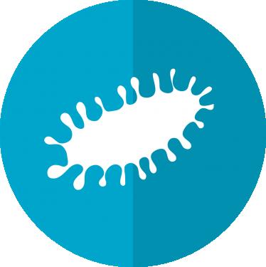 Urogenitale infeksjoner