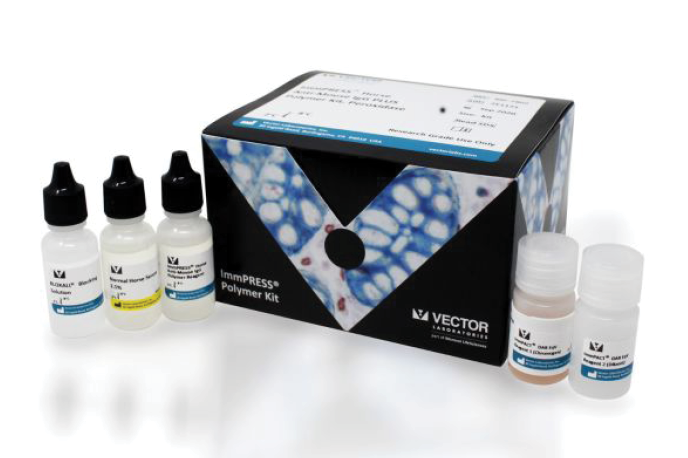 New VECTASTAIN® ABC and ImmPRESS® Polymer IHC kits