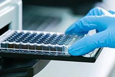 Detection assays for SARS-CoV-2