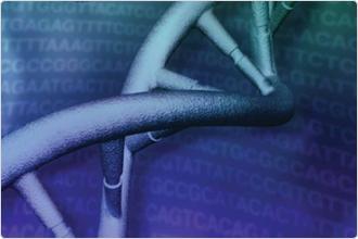 Gjør du Oxford Nanopore sekvensering?