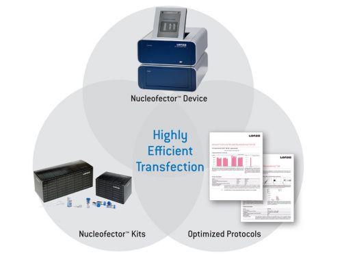 Nucleofector technology