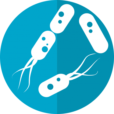 Enteriske infeksjoner og parasitter